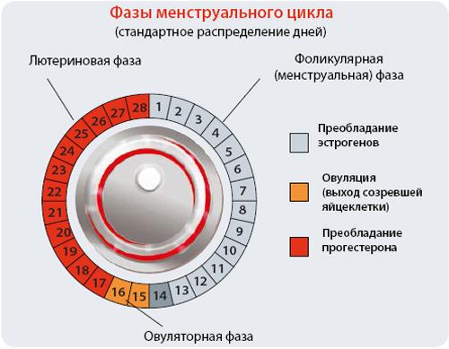 EC_tabl2