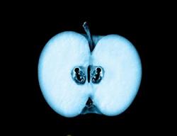 Рентгеновский снимок яблока