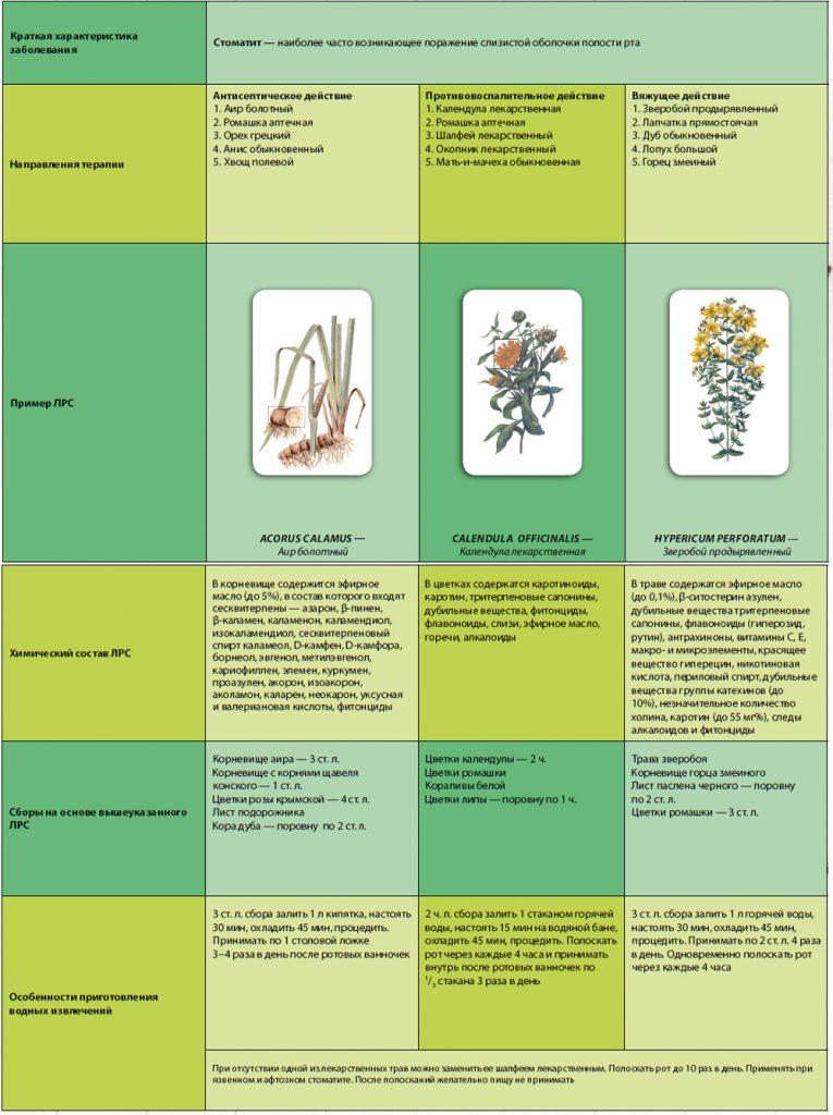 фитотерапия стоматита