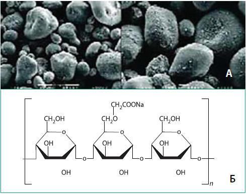 Рис. 2. Вид натрия крахмала гликолята под сканирующим электронным микроскопом до и после контакта с жидкостью (А) и его химическая структура (Б) [20]