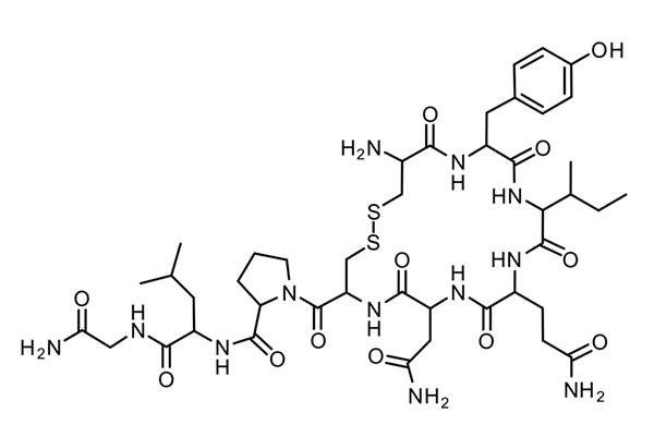 Окситоцин