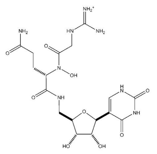 Структура псевдоуридимицина
