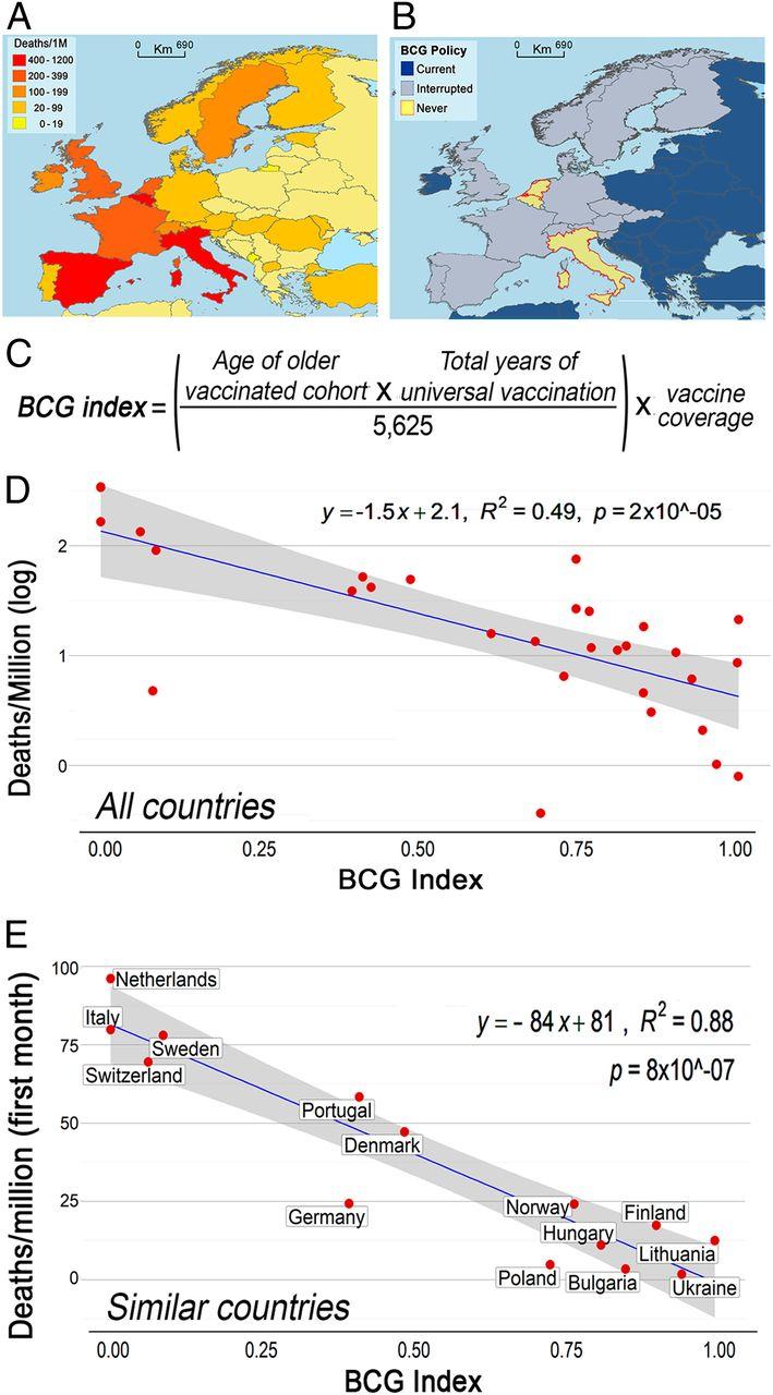 Зв'язок між смертністю від COVID-19 та вакцинацією БЦЖ в Європі